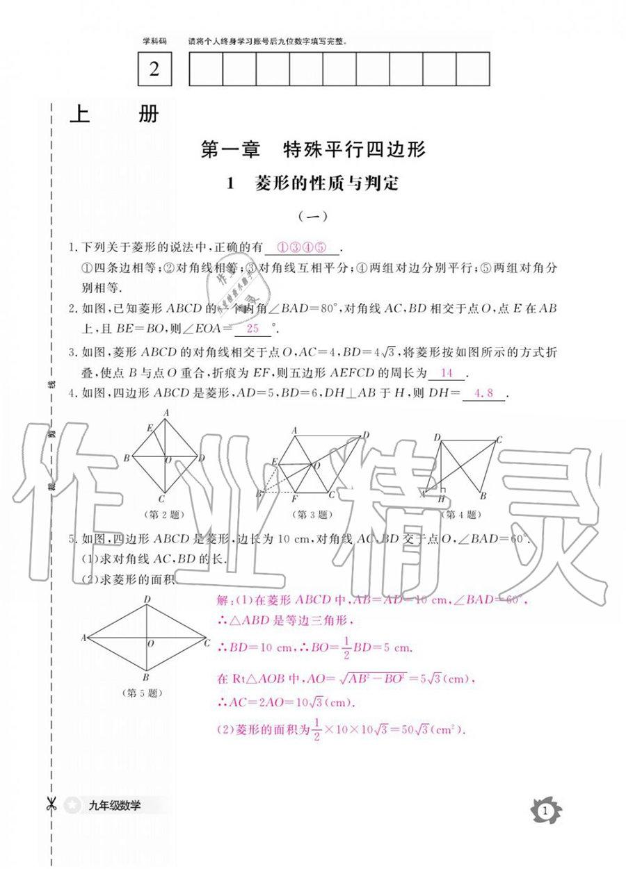 北师大版九年级上册数学作业本答案
