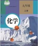 人教版九年级化学上册