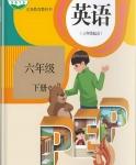 人教版六年级英语下册(PEP)